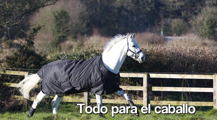 Todo para el caballo