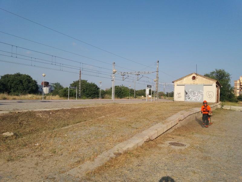 Desbroce estación de trenes de Vilaseca