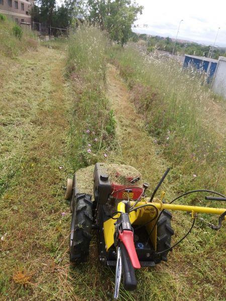desbrozadora limpieza hierba en Reus