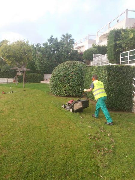 mantenimiento de jardines Cambrils