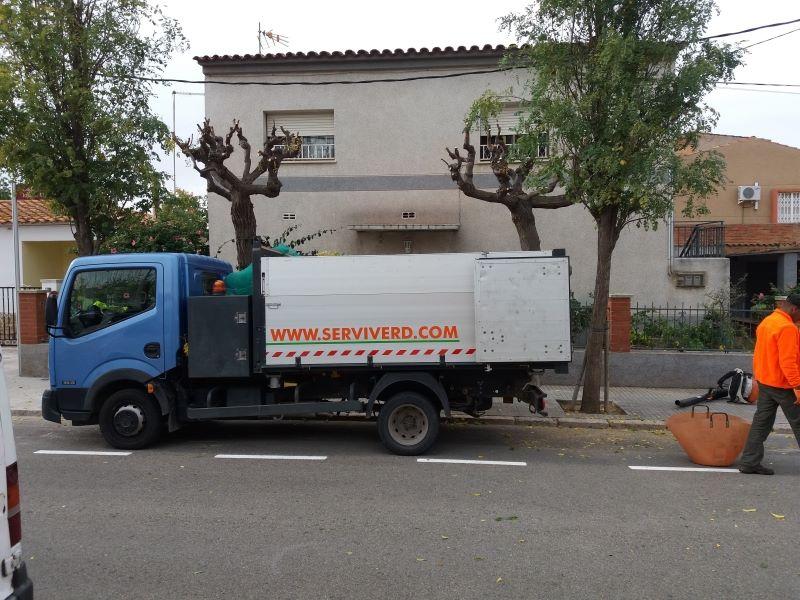 Poda jardineria Reus, Tarragona