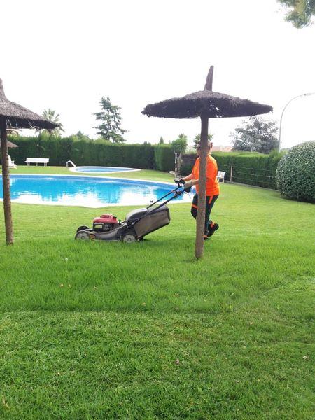 Mantenimiento jardin en Reus