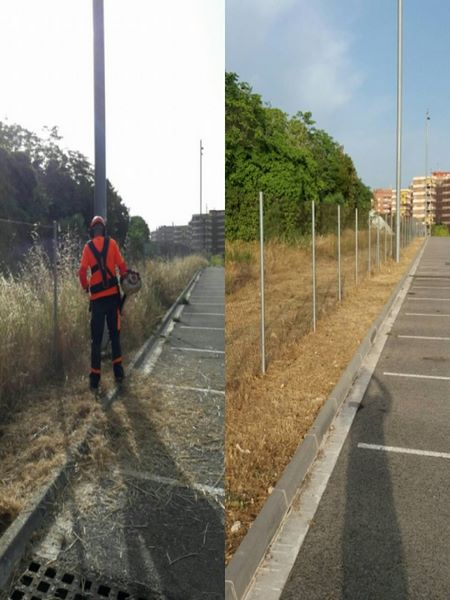 antes y despues, desbroce cortafuego Tarragona