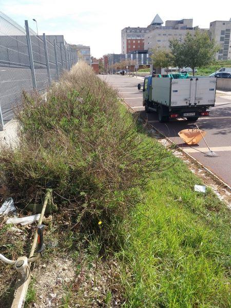 servicio de Jardineria, limpieza hierba Tarragona