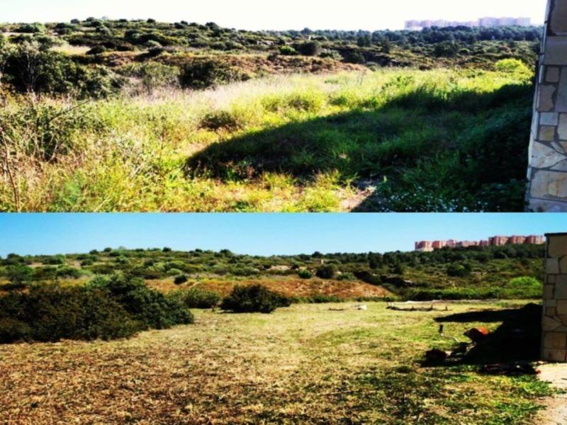 antes y despues terreno en Montblanc