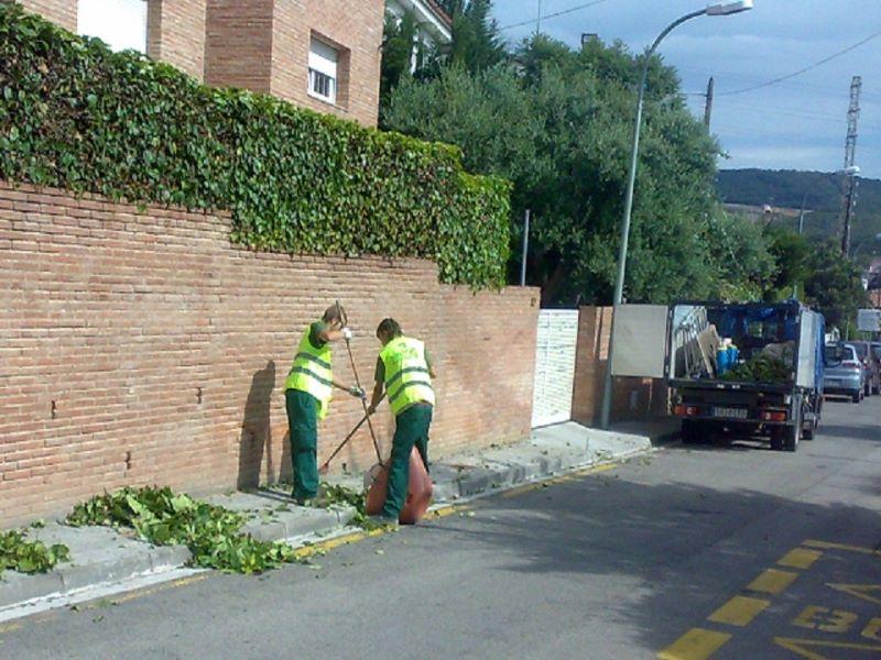 Jardin, poda en Boscos de Tarragona