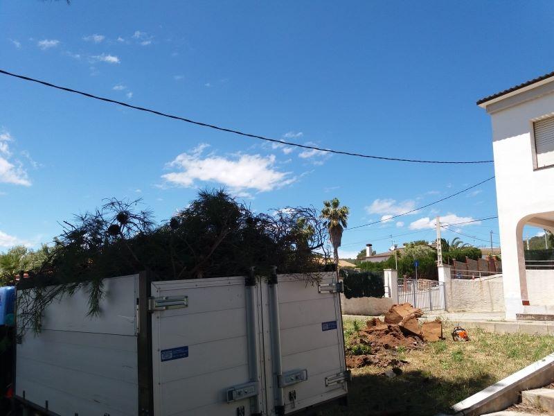 recogida y transporte de troncos y ramas,Tarragona
