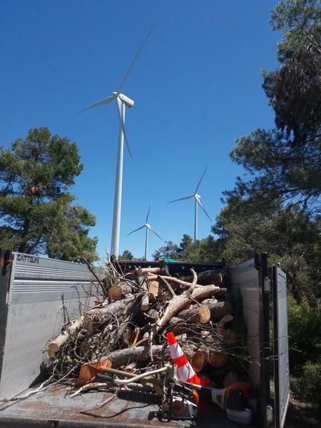 empresa treballs forestals provincia de Tarragona